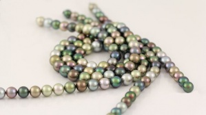 Glorious Tahitian pearls in various colours